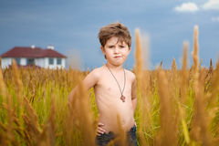 Handsome young boy having fun playing on the meadow in summer wi Stock Photos