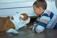 Handsome Young Boy kid wearing cozy pajamas Playing with His english funny bull Dog on the floor enjoy life time weekend hanging royalty free stock image