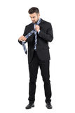 Handsome young business man tying necktie knot Royalty Free Stock Photos