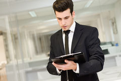 Handsome young businessman in an office Royalty Free Stock Photography