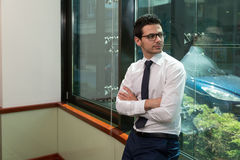 Handsome Young Businessman Portrait In His Office Royalty Free Stock Images