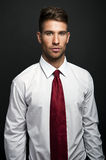 Handsome young businessman standing Royalty Free Stock Image