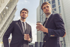 Handsome young businessmen royalty free stock images