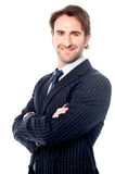 Handsome young corporate executive Royalty Free Stock Photos