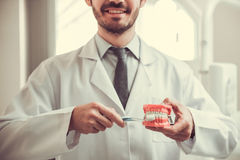 Handsome young dentist Stock Photography
