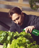 Handsome grower is carefully irrigating plants indoor. Royalty Free Stock Images