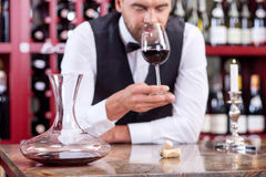 Handsome Young Male Waiter Is Tasting Red Drink Royalty Free Stock Photos