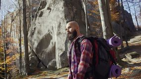 A handsome young man with a beard walks in the warm autumn day. A tourist traveled in the woods in the autumn season stock video footage