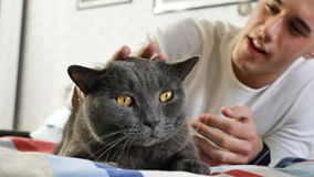 Handsome Young Man Cuddling his Gray Cat Pet. Handsome Young Animal-Lover Man on a Bed, Hugging and Cuddling his Gray Domestic Cat Pet Stock Photo