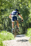 Handsome young man cycling in the mountain. Stock Photography