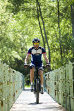 Handsome young man cycling in the mountain. Royalty Free Stock Images