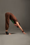 Handsome young man doing yoga uttanasana Royalty Free Stock Photography