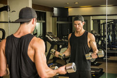 Handsome young man exercising biceps in gym Royalty Free Stock Photo
