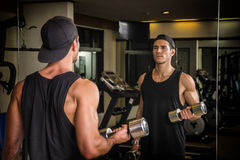 Handsome young man exercising biceps in gym Royalty Free Stock Images