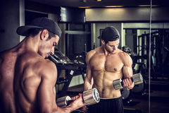 Handsome young man exercising biceps in gym Stock Photo