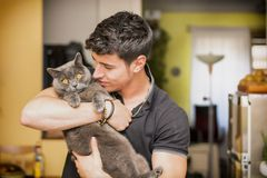 Handsome Young Man Hugging his Gray Cat Pet. Handsome Young Animal-Lover Man Inside the House, Hugging his Gray Domestic Cat Pet Stock Photography