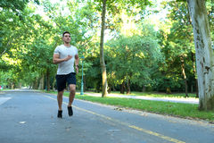 A handsome young man jogging in a park Royalty Free Stock Images