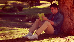 Handsome young man reading a book leaning against a tree stock footage
