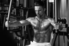 Muscular man training in gym. Handsome young man with sexy muscular wet body and bare back training with heavy exercise equipment in gym Stock Image