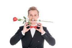 Man in suit with rose flower Royalty Free Stock Images