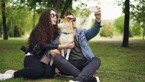 Handsome young man is taking selfie with his pretty wife and cute dog, all wearing sunglasses. Guy is holding smartphone. Taking funny pictures and posing stock footage