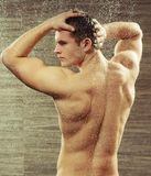 Handsome young man taking a shower. Muscular allure. Rear view of muscular gay man taking a shower against grey tile Stock Image
