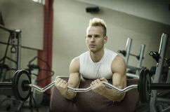 Handsome young man training biceps in gym. Handsome young man training biceps lifting barbell on bench in a gym, looking straight Stock Photos