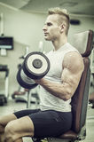 Handsome young man training biceps in gym. Handsome young man training biceps lifting dumbbells on bench in a gym Stock Photos