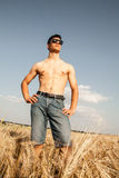 Handsome young man on wheat field Royalty Free Stock Image