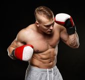 Handsome young muscular man Stock Image
