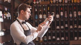 Immersed alcohol critic fixedly gazing at wine. Handsome and young smiling brown haired sommelier with a bottle of wine on the background of dark wine house with stock video