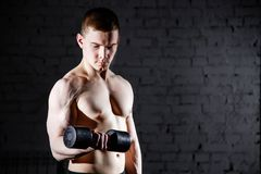 Handsome young shirtless man with muscular sexy body doing exercises using dumbbell against a brick wall. Stock Images
