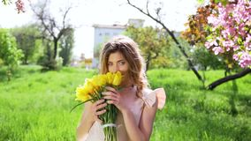 Handsome young woman with bouquet of tulips among flowering garden. Attractive woman at spring concept. Medium shot. Petals falls stock footage