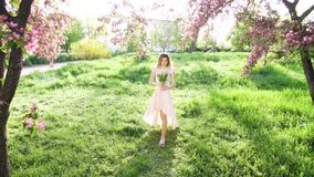 Handsome young woman with bouquet of tulips among flowering garden. Attractive woman at spring concept. Wide shot stock footage
