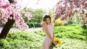 Handsome young woman with bouquet of tulips among flowering garden. Petals falls from trees, spring concept stock video