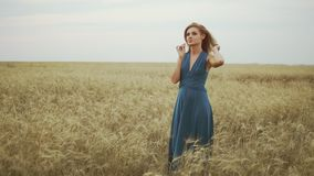 Handsome young woman in a long blue dress standing in golden wheat field trying the wheat`s stem, touching her hair and. Enjoying nature. Freedom concept stock video