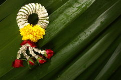 Handspinnende Blumen Lizenzfreie Stockfotos