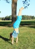 Handstand тренировки девушки Стоковые Изображения