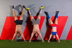 Handstand push-up group workout at gym. Handstand push-up group pushups workout top position at gym Royalty Free Stock Photography