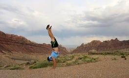 Handstands человека запятнали край каньона волка Стоковые Фото