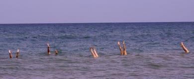 Handstands de Michigan de lago Foto de archivo libre de regalías