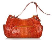 Handtasche im Krokodilleder Lizenzfreie Stockfotos