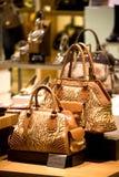 Handtaschen-und Schuh-System Lizenzfreies Stockbild