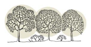 Handteckningen skissar av träd Royaltyfri Fotografi