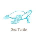Handtekening van een zeeschildpad Vector illustratie Stock Afbeeldingen