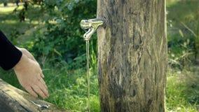 Handtvagning på det trädgårds- klappet running vatten för vattenkran stock video