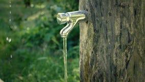 Handtvagning på det trädgårds- klappet running vatten för vattenkran Sommaruppfriskning och skölja med vårvatten Roterande klapp  stock video