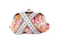 Handväska och räkneverk Royaltyfria Bilder