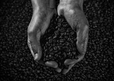 Handvol zwart-witte koffiebonen Stock Afbeelding