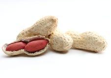 Handvoll der Erdnuss Lizenzfreies Stockbild
